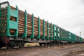 TITAN GROUP LOGGING COMPANIES HAVE HARVESTED 1.446,8 THOUSAND M³ OF TIMBER FOR 5 MONTHS IN 2019